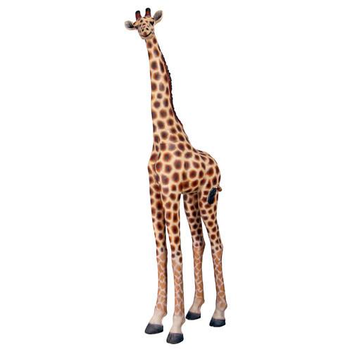 FRP Sculpture Giraffe