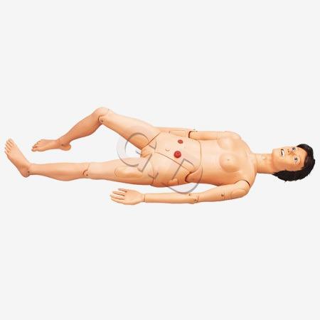 Nursing Manikins Models