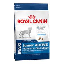 Royal Canin Maxi Junior - Active Dry Dog Food