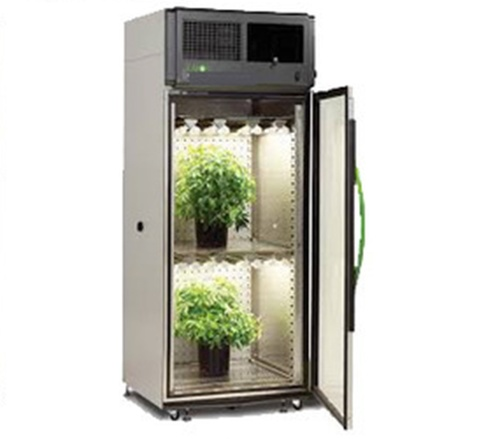 INSECT GROWTH CHAMBER