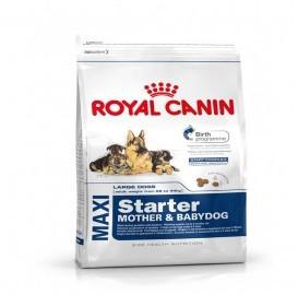 Royal Canin Maxi Starter - Mother & Babydog Dry Food