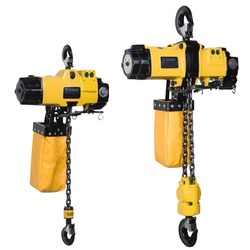 Ehl Chain Air Hoist Capacity: 0.1 Ton/Day