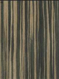 Ebony Brown Veneers