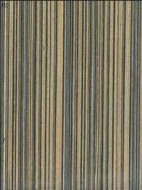 Stripes Veneers