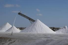 Salt Expoter