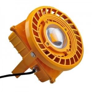 30W Explosion proof Light