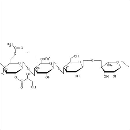 Structure of Native or High Acyl Gellan Gum