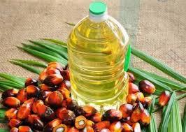 Palm Vegetable oil