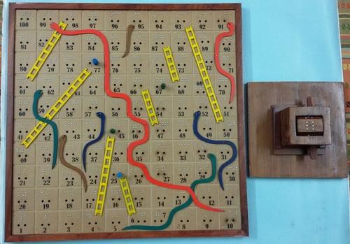 Snake & Ladder Board Game