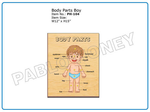 Wooden Cutout Body Parts Boy