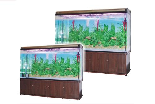 Classic Fish Aquarium