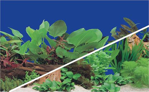 Aquarium Plastic Background
