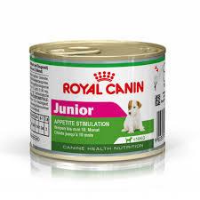 Royal Canin Mini Junior wet dog food