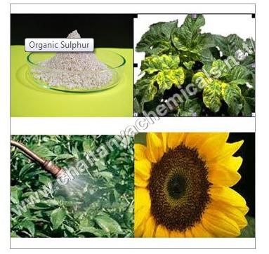 Organic Sulphur