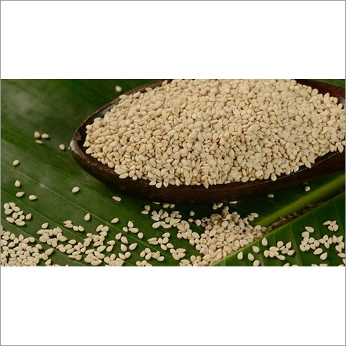 Conventional Sesame Seeds