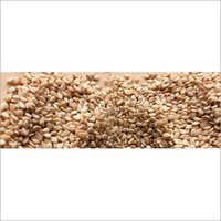 Pesticides Free Sesame Seeds