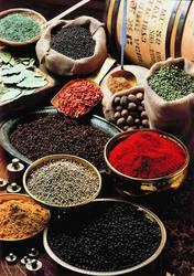 Spices Formulation Services