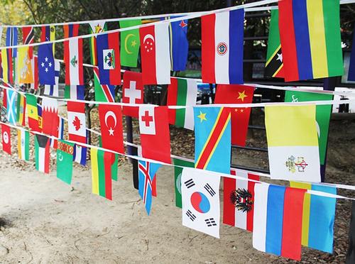 Buntings Flags
