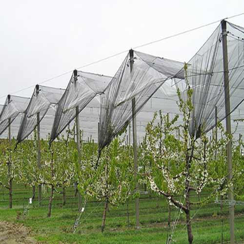 Farming Covering Net Fabrics