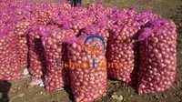 Onion & Garlic Net Bags Fabrics
