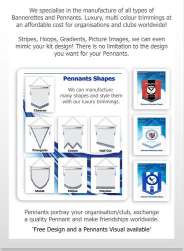 Rotary Pennants Award Banners 2