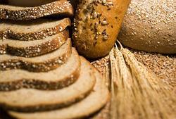 High Fiber Bread Consultancies Services