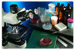 Cosmetic Formulation Testing Services