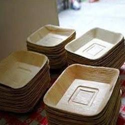 Areca Leaf Food Tray