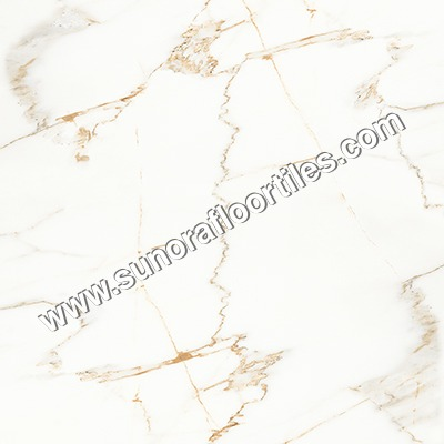 Gloss Bathroom Floor Tiles
