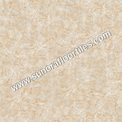 Glossy Floor Tiles