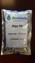 Alga 95