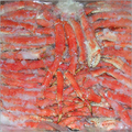 Live And Frozen Blue King Crab