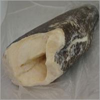 Chilean Sea Bass Copy