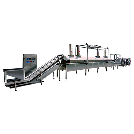 Continuous Cashew Kernel Frying Machine