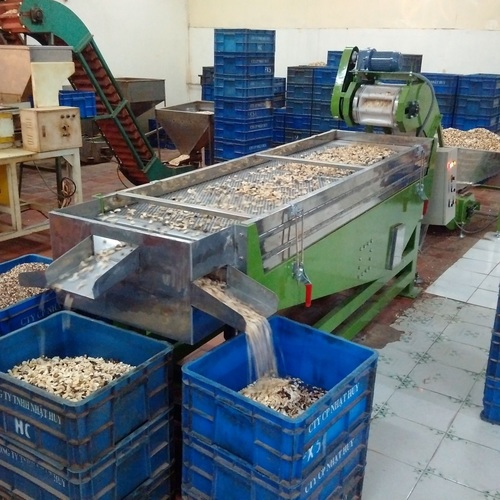Broken Cashew Kernel Sorting Machine