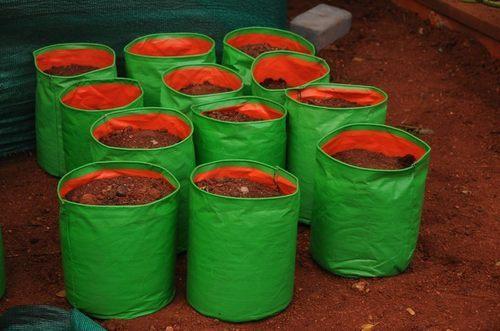 HDPE Plant Bag