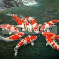 Fish Testing Laboratory