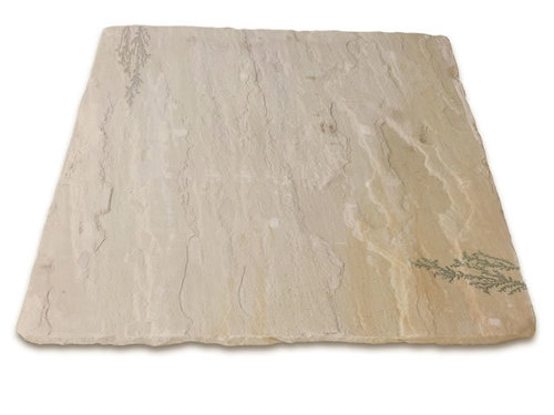 Mint Fossil Sandstone