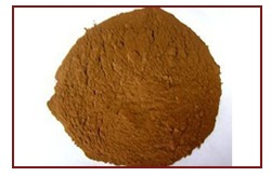 Vegetable Extract Powder