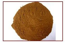 Vegetable Extract Powder