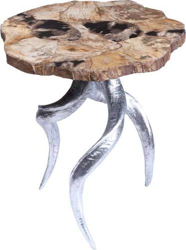 Petrified-Wood-End-Table-4