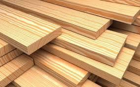 saal plywood