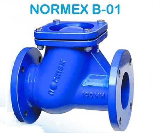Normex B-01 Ball Check Valve (Flanged)