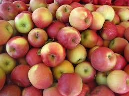 Grade A Fuji Apple