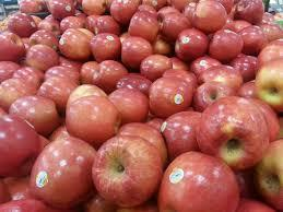 Grade A Fuji Apple For sale