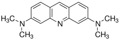 Acridine Orange Hcl Hydrate