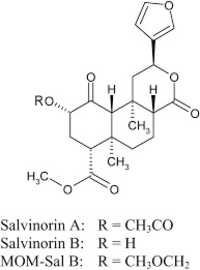 2-Methoxymethyl salvinorin B