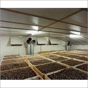 Potato Cold Storage
