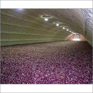Onion Storage Plant