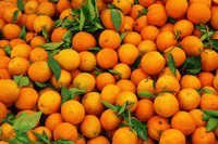 Fresh Valencia Oranges